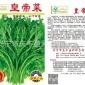 批发保健蔬菜种子--皇帝菜(8633)